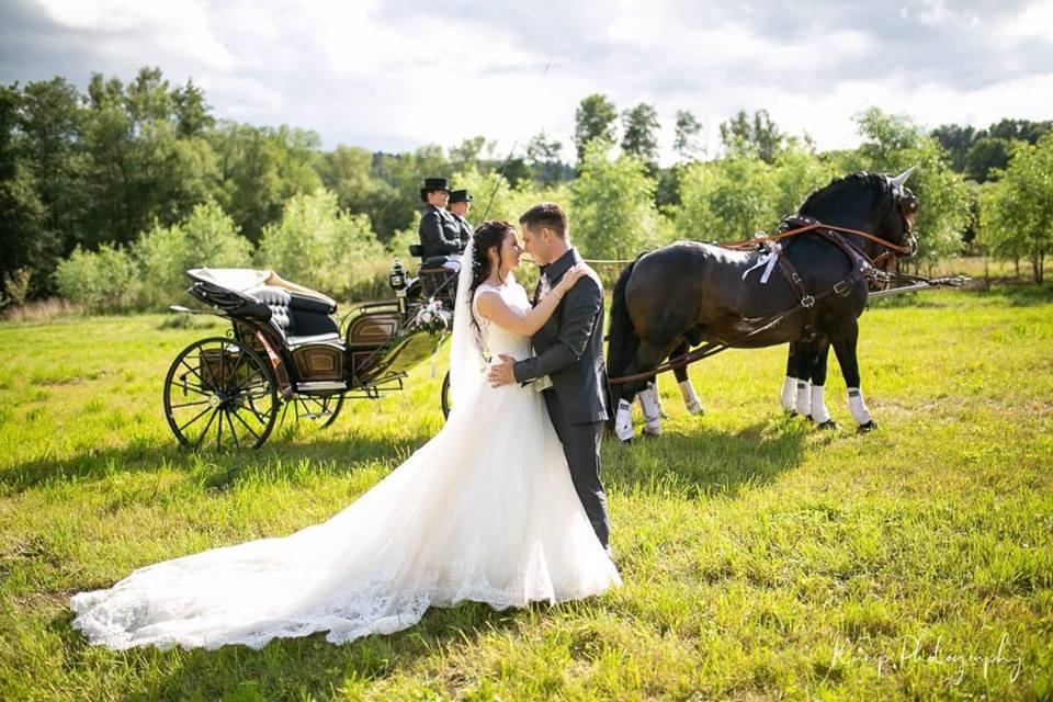 Schreibersdorfer Hochzeitskutsche